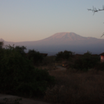 morning-sun-on-kilimanjaro