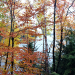 at-the-cottage-in-october